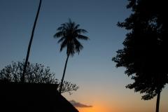 Coucher de soleil 7101