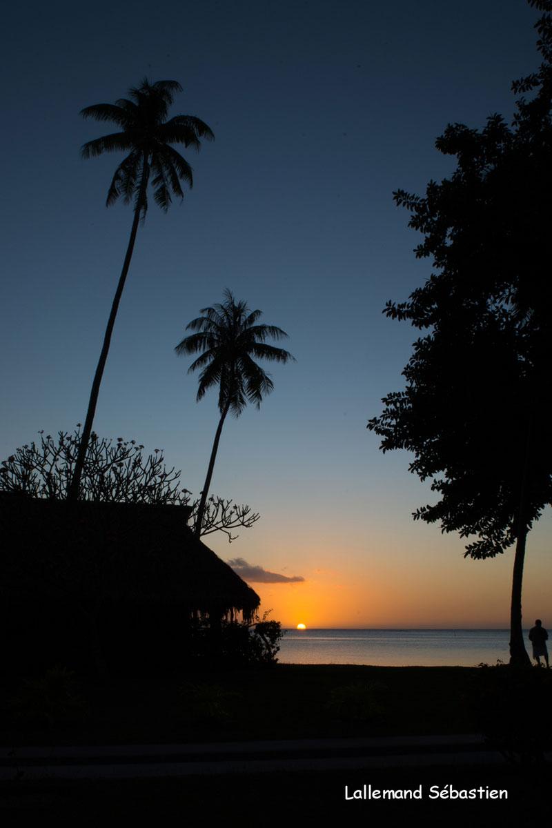Tahiti 7101