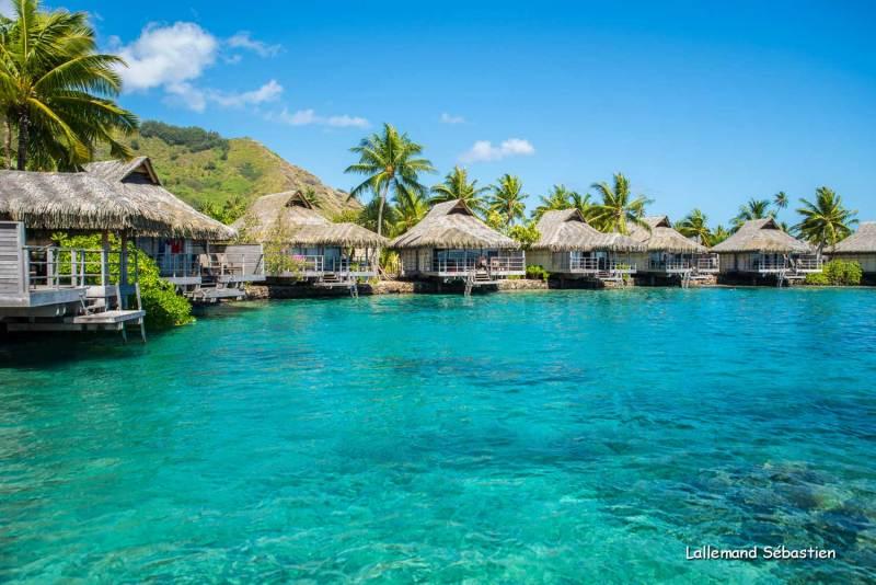 Tahiti 6977