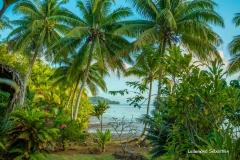 Tahiti 7492-2