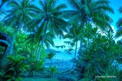 Tahiti 7492